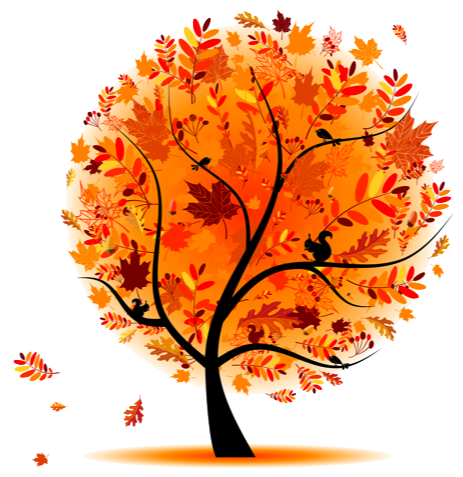 Autumn-tree-rh.png